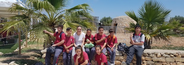 Class 209 visits Arka ta' Noe