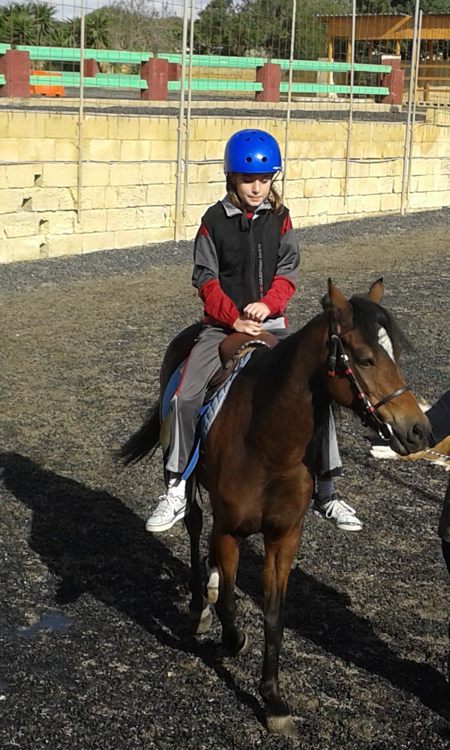 Horse-riding at Sunflower Stables