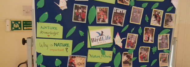 BirdLife Project