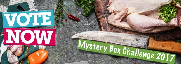 Mystery Box Challenge 2017 – Vote Now