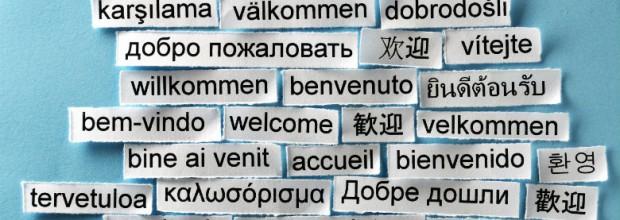Language Integration Support